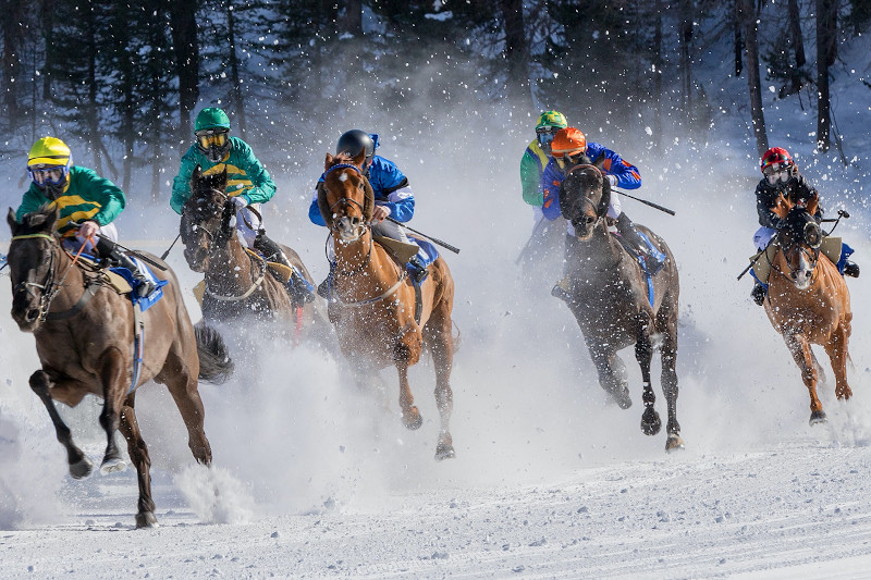 course-de-chevaux-neige